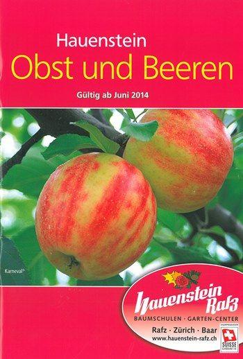 Fachbuch Obst und Beeren
